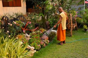 work-meditation-wild-life-tantra-aum