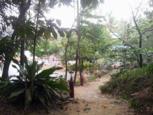 Hinterland von Palolem - Reisebericht Indien 2019