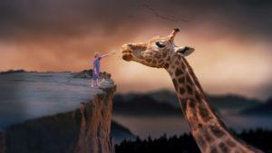 Kleiner Junge steht auf einem Hochplateau vor dem Kopf einer riesigen Giraffe die unten steht und streichelt die Nase