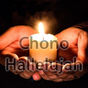 Chono - Hallelujah - Cover